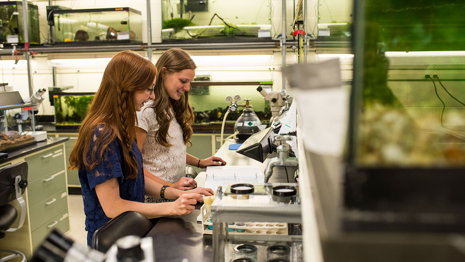 two students in the biodiversity lab at saint joseph's university